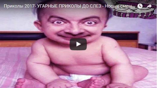 Скачать самые смешные и прикольные видео