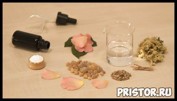 Таволга - лечебные свойства и противопоказания, применение 1