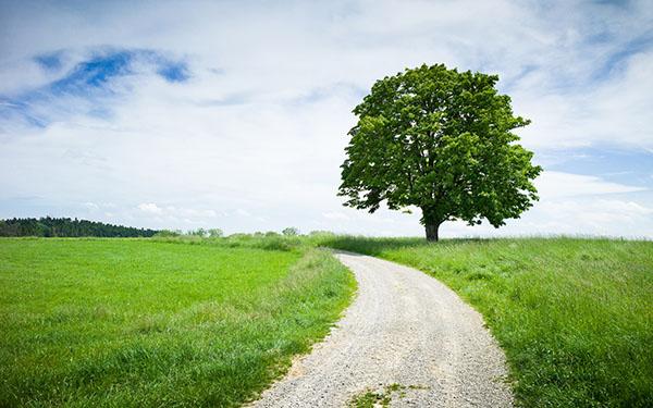 Картинки лето природа, красивые картинки пейзажи природы 5