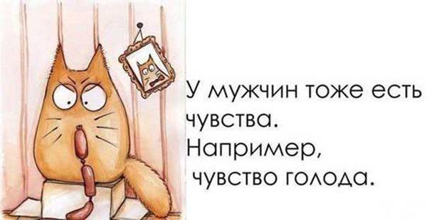 Смешные картинки с надписями про мужчин - смотреть бесплатно 4