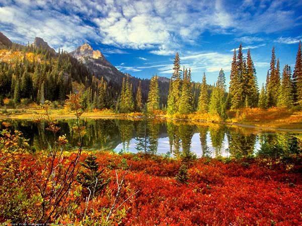 Картинки осень природа, красивые фото осени природа 15