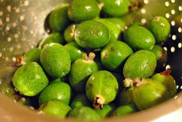 Фейхуахуа фрукт - красивые фото и картинки, смотреть 8