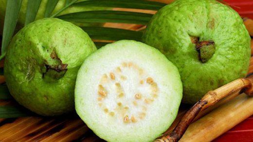 Фейхуахуа фрукт - красивые фото и картинки, смотреть 7