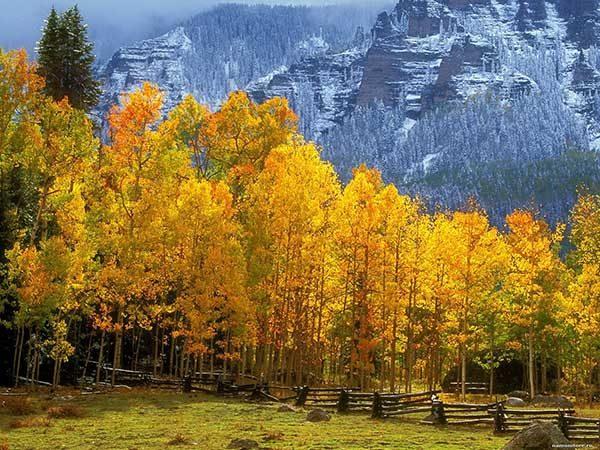 Картинки осень природа, красивые фото осени природа 14