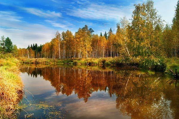 Картинки осень природа, красивые фото осени природа 16