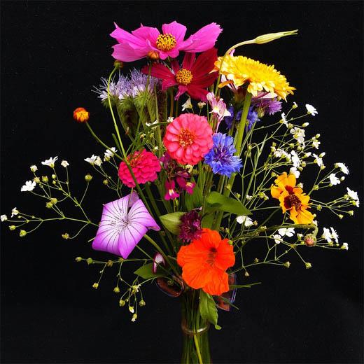 Букеты цветов картинки, фото - красивые, удивительные, интересные 1