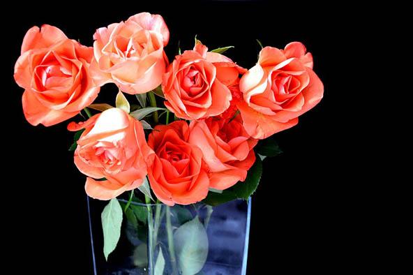 Букеты цветов картинки, фото - красивые, удивительные, интересные 15