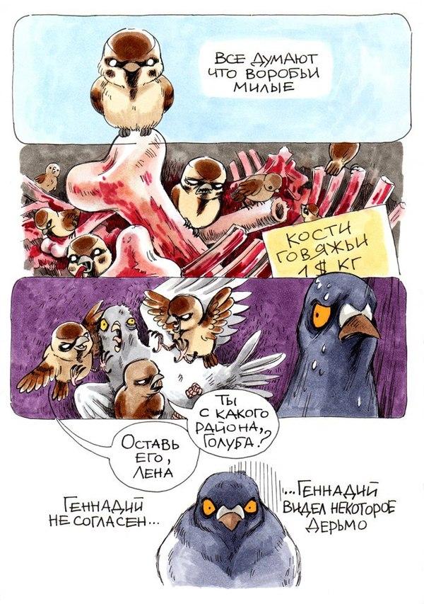 Голубь Геннадий смешной комикс - смотреть бесплатно 4