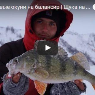 Зимняя рыбалка 2017 новинки видео - смотреть бесплатно, лучшая подборка