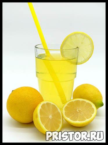 Как вырастить лимон из косточки в домашних условиях - с чего начать 2