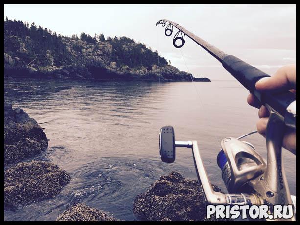 Как приготовить прикормку для рыбы своими руками на рыбалку 1