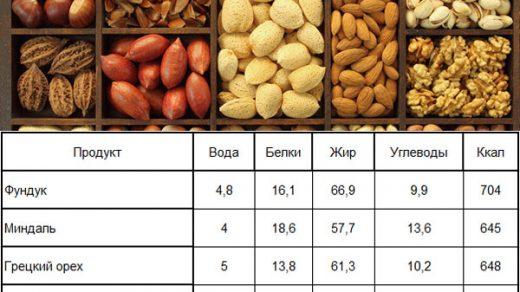 Калорийность продуктов - таблица на 100 грамм Орехи