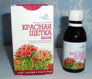 Красная щетка - лечебные свойства и противопоказания, применение 3