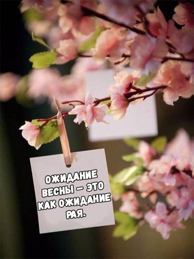 Цитаты про весну - красивые, короткие, удивительные, прикольные 7
