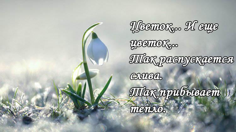 Цитаты про весну - красивые цитаты, со смыслом, высказывания и фразы 2