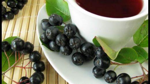 Черноплодная рябина - лечебные свойства и противопоказания, применение 3