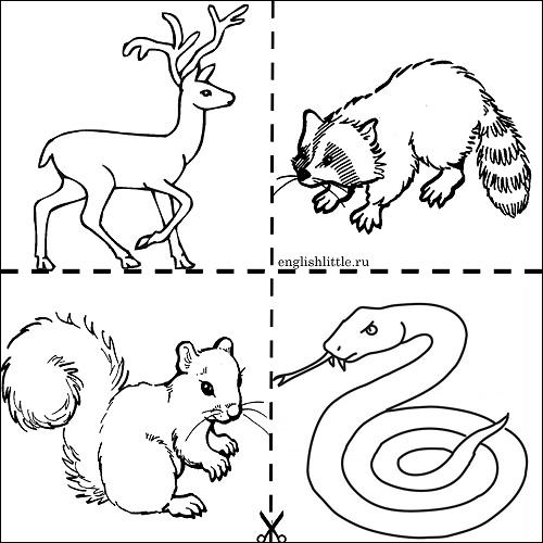 Черно белые картинки животных для детей - смотреть бесплатно 2