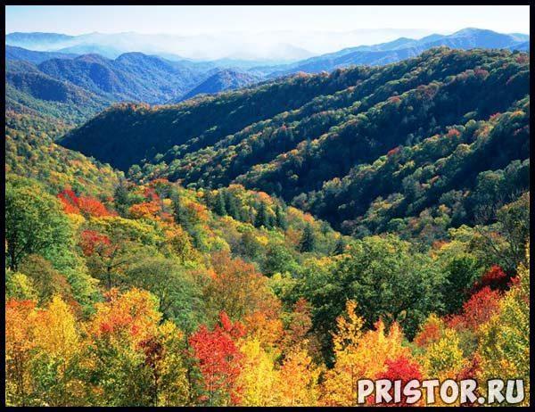 Самые высокие горы Северной Америки - описания, названия 1