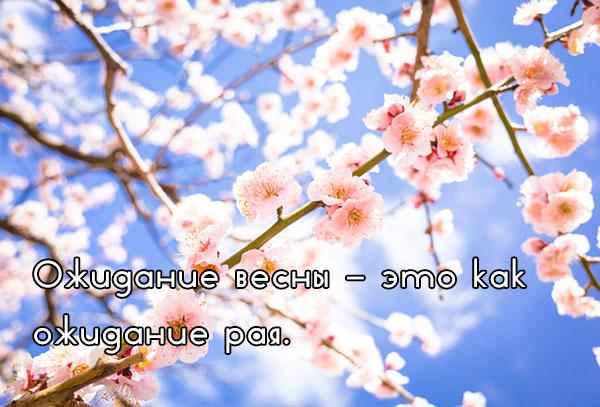 Цитаты про весну и любовь - красивые, удивительные, со смыслом 2