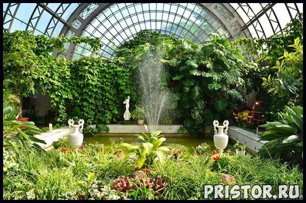 Таврический дворец зимний сад - описание, фото, интересное 1