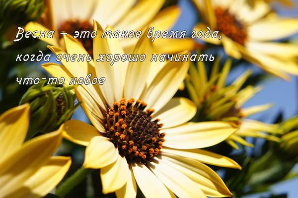 Цитаты про весну и любовь - красивые, удивительные, со смыслом 3