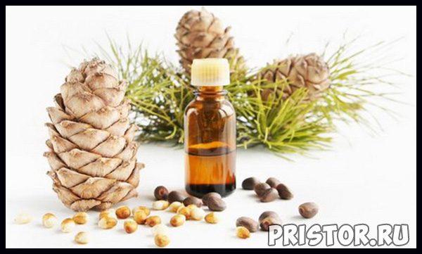 Кедровое масло - лечебные свойства и противопоказания, применение 1