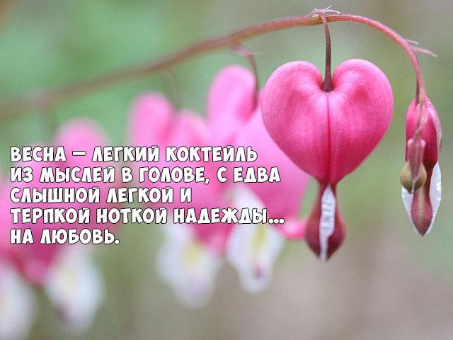 Цитаты про весну и любовь - красивые, удивительные, со смыслом 7