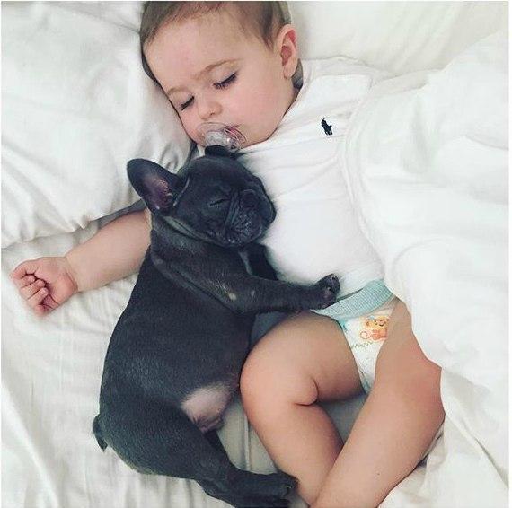 Веселые и смешные фото детей и животных - смотреть бесплатно 1