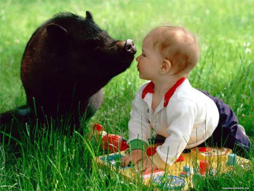 Веселые и смешные фото детей и животных - смотреть бесплатно 13