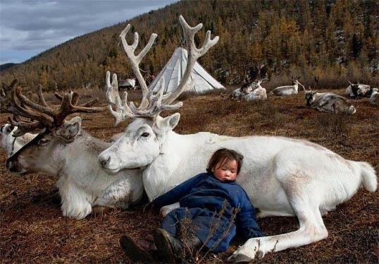 Веселые и смешные фото детей и животных - смотреть бесплатно 15