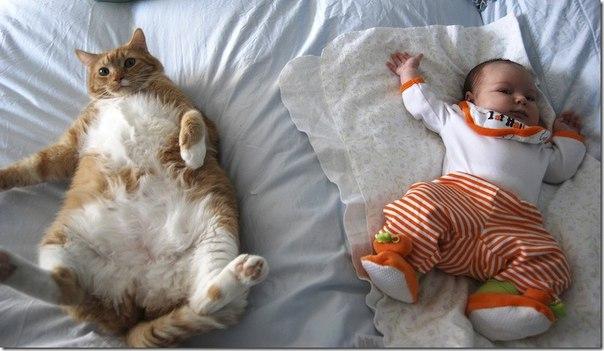 Веселые и смешные фото детей и животных - смотреть бесплатно 2