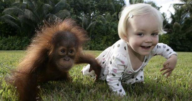 Веселые и смешные фото детей и животных - смотреть бесплатно 5