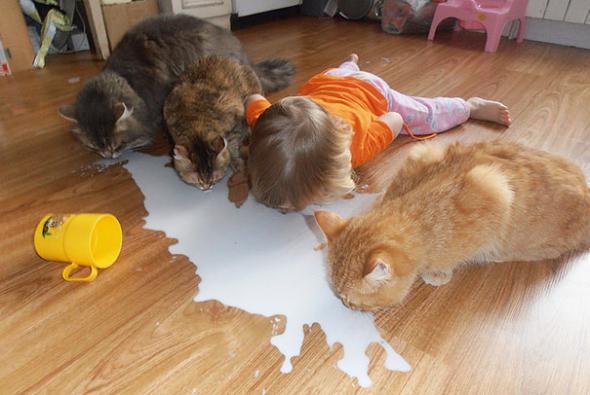 Веселые и смешные фото детей и животных - смотреть бесплатно
