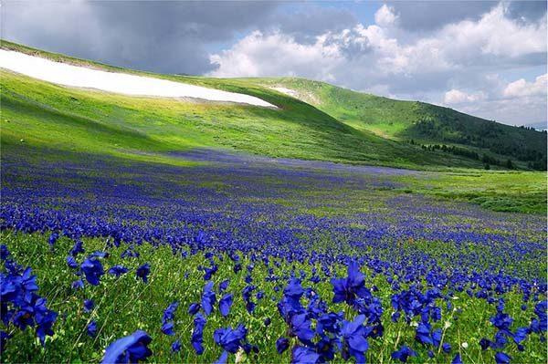 Красивая и удивительная природа земли - смотреть фото и картинки 4