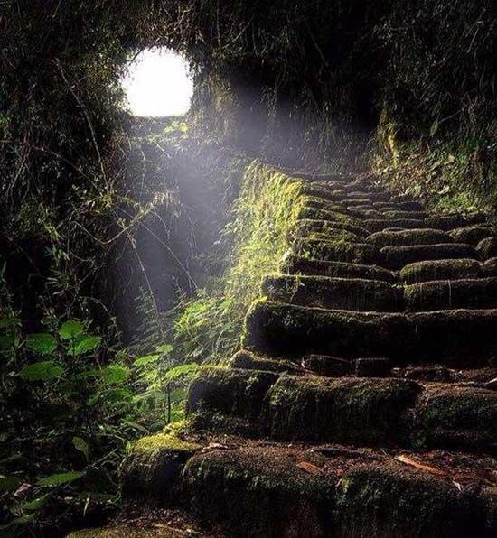 Красивая и удивительная природа земли - смотреть фото и картинки 6