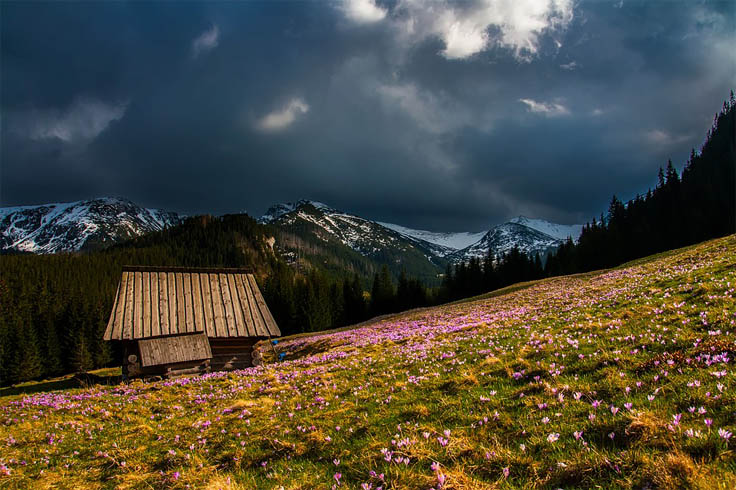 Красивые и удивительные картинки, фото весны - смотреть бесплатно 2