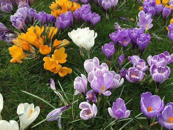 Красивые и удивительные картинки, фото весны - смотреть бесплатно 5