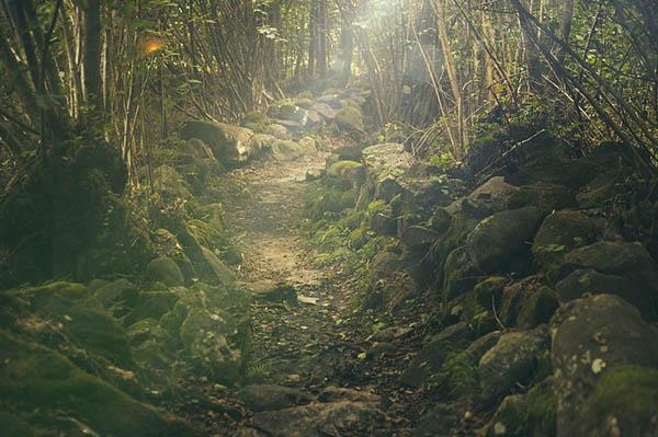 Красивые и удивительные явления природы - смотреть фото 3