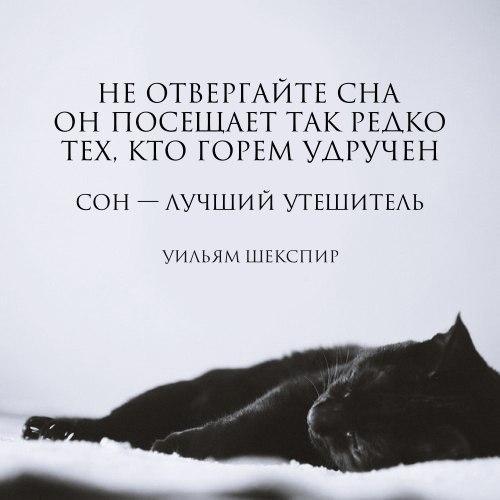 Красивые картинки с цитатами про жизнь - читать бесплатно 5