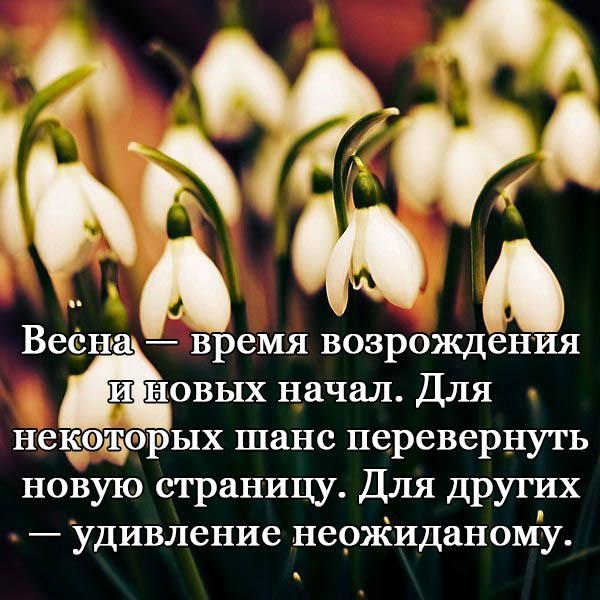 Красивые цитаты про весну - короткие, новые, свежие, со смыслом 1