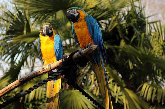 Красивый и удивительный мир природы - картинки, фото, смотреть 7