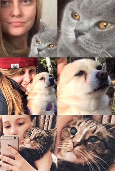 Очень веселые и смешные фото кошек и собак - смотреть бесплатно 6