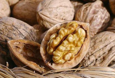 Перегородки грецких орехов - лечебные свойства и противопоказания 1