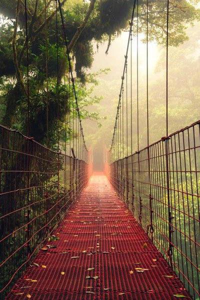 Прекрасная и удивительная красота природы - фото, смотреть бесплатно 5