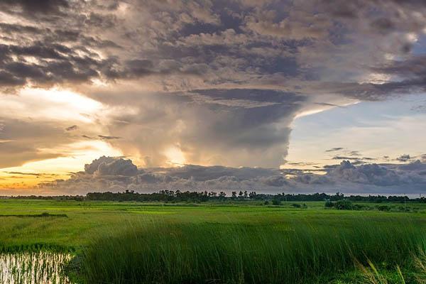 Прекрасная и удивительная природа фото - красивые, смотреть 14