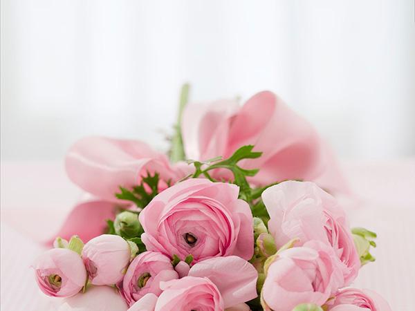 Розы - красивые фото, картинки, смотреть бесплатно 4