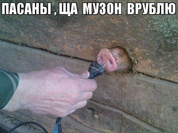 Смешные картинки про животных до слез - смотреть бесплатно 19