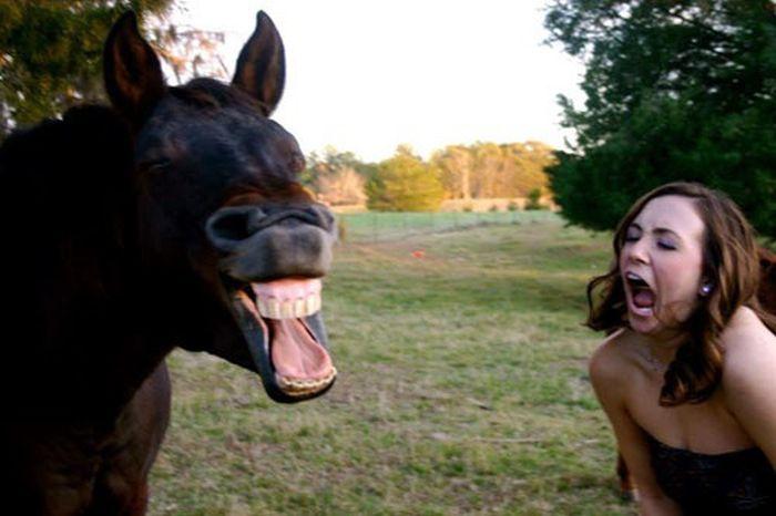 Смешные фото приколы про пьяных девушек - смотреть бесплатно 8