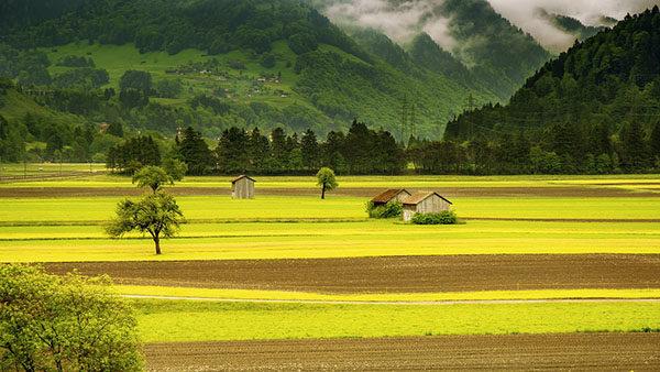 Удивительные и красивые картинки про природу - смотреть бесплатно 11