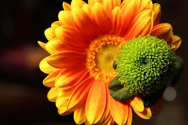 Удивительные и красивые картинки про природу - смотреть бесплатно 18